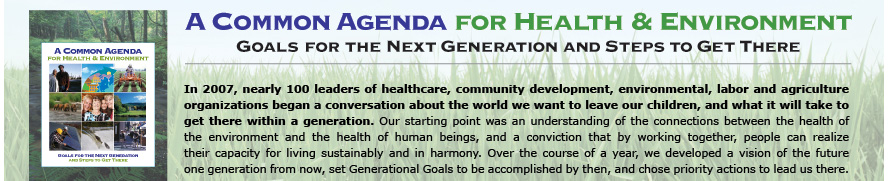 A Common Agenda for Health & Environment - Goals for the Next Generation and Steps to Get There